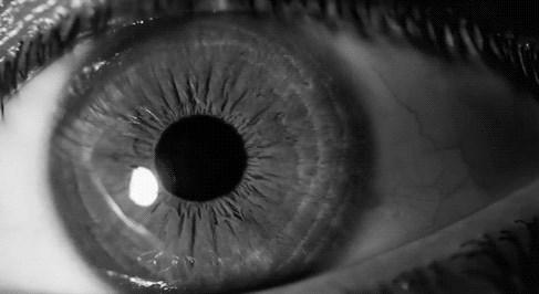 insan gözü kaç megapiksel