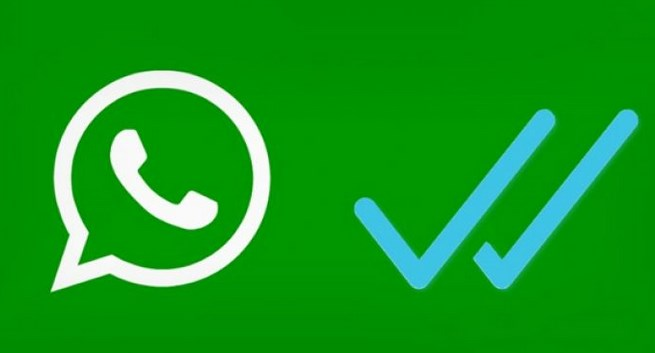 whatsapp gıf gönderimi